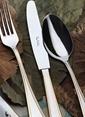 Pierre Cardin Maxwell Çatal-Bıçak Seti Renkli